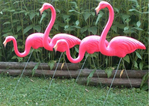 2 Pairs of Flamingos (4 flamingos)